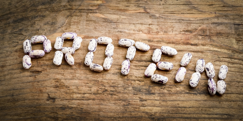 gute Proteinquellen pflanzliches Eiweiß Proteine Lebensmittel