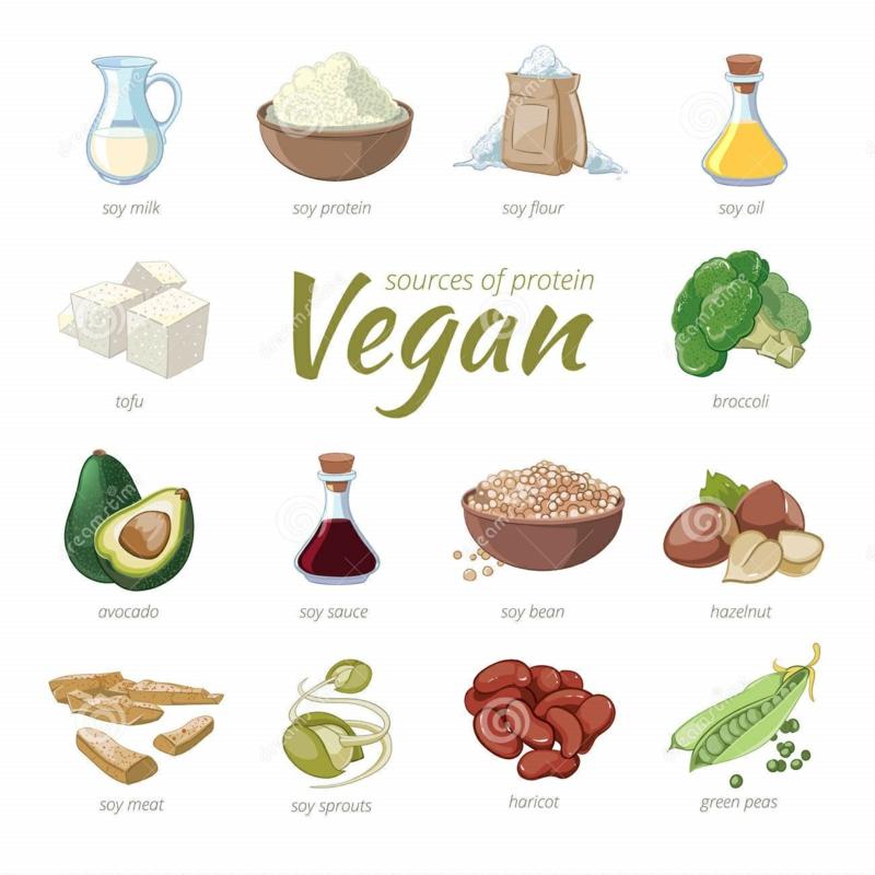 gute Proteinquellen pflanzliches Eiweiß vegane Ernährung gesund
