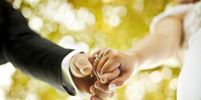 widder horoskop frauen männer partner familie ehe hochzeit 2016