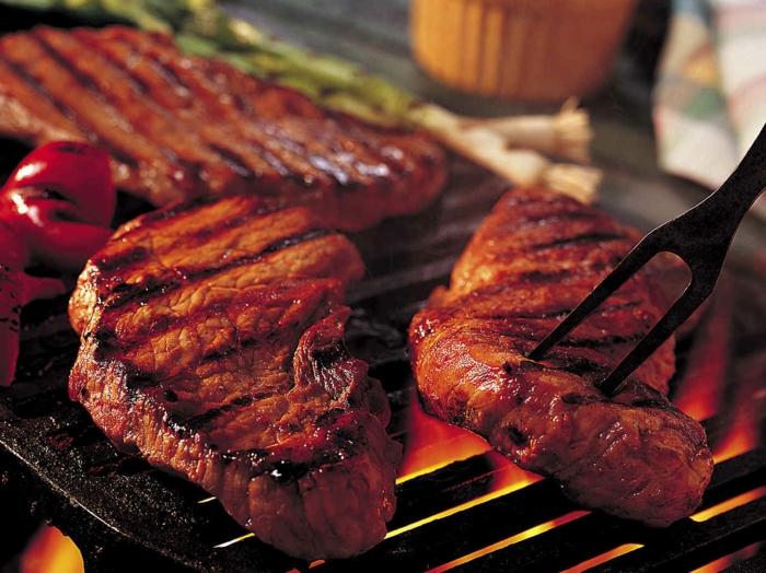 lebe gesund tipps rotes fleisch zu viel proteine schädlich für die nieren