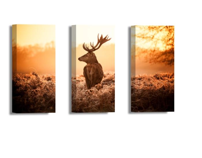 Moderne leinwandbilder online bestellen for Hirschbilder modern