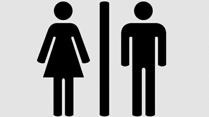 nieren stärken auf die toilette gehen nicht abwarten