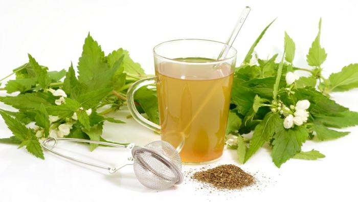 schnell und gesund abnehmen gesunde ernährung tee trinken