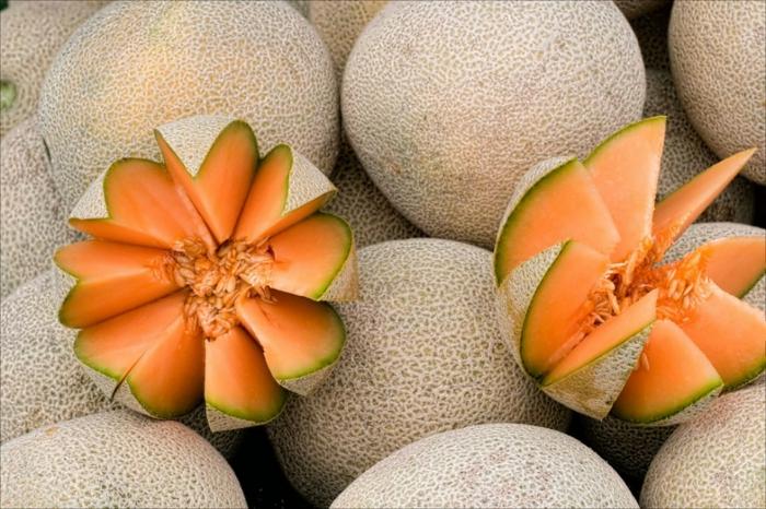 trennkost ernährung gesund frisches obst zuckermelone essen