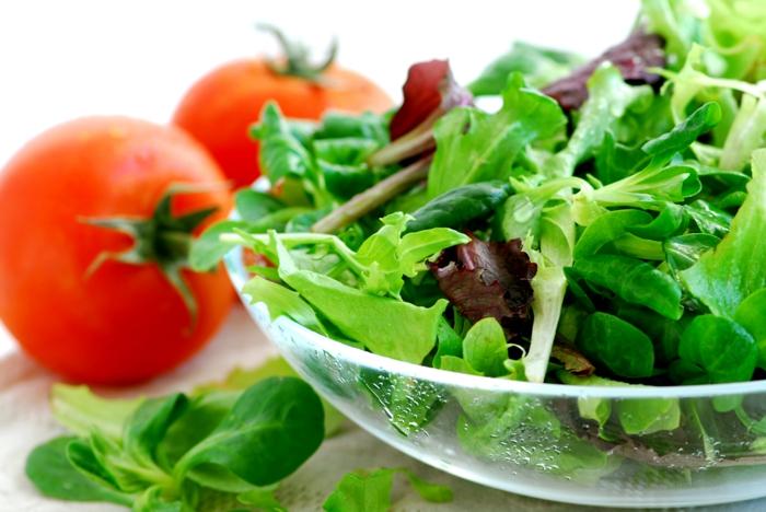 trennkosternährung ernährung gesund essen lebensmittel frisch tomaten rukola blattsalat