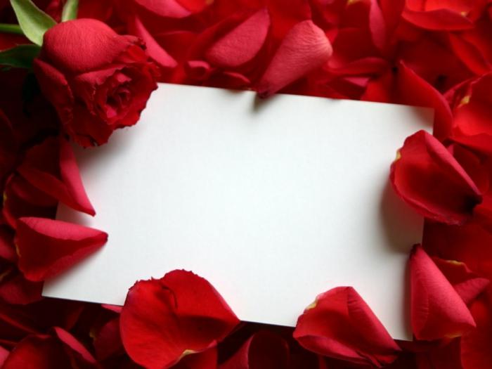 valentinstag bedeutung rosen verschenken spanien dänemark
