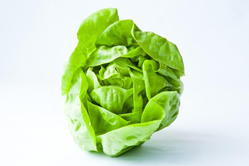 vegane Ernährung gesund Kopfsalat vegan leben