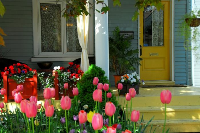 vorgartengestaltung tulpen blumen anlegen gelbe haustür