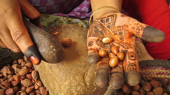 arganöl wertvoles öl gesund arganbaum ölgewinnung henna handverzierungen arganfrüchte afrika