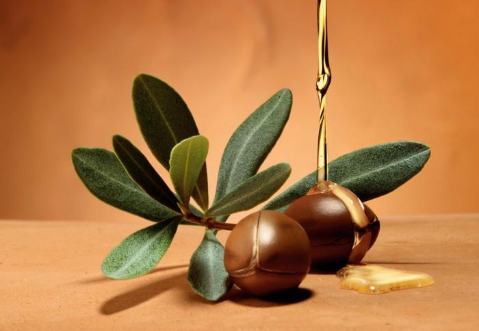 arganöl wertvoles öl gesund früchte gesichtspflege gesichtsmaske hydierende körperpflege