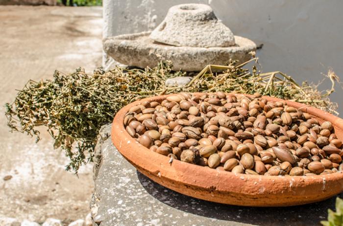 arganöl wertvoles öl gesund früchte schalen ölgewinnung afrika