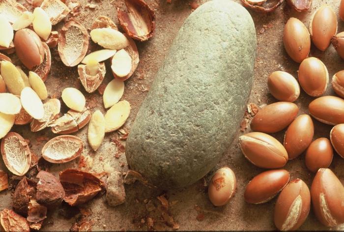 argan wertvoles öl gesund früchte traditionelle ölgewinnung afrika marokko