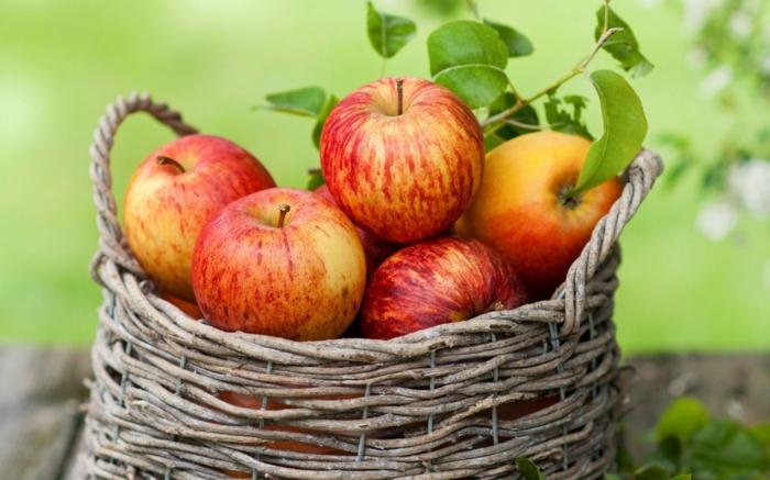 bewusste ernährung äpfel früchte essen gesund