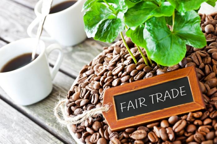 fair trade kaffee bio bohnen alternativer handel wachmacher
