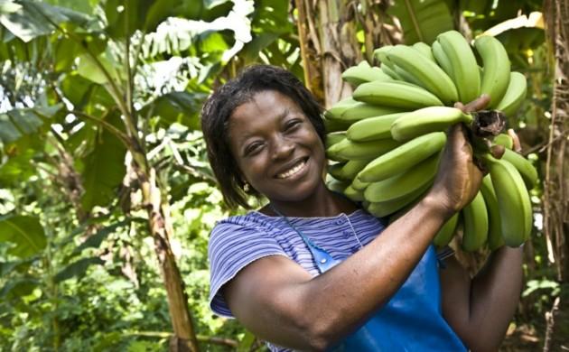 fairtrade-produkte-einkaufen-bananen-bio-fair-zertifiziert