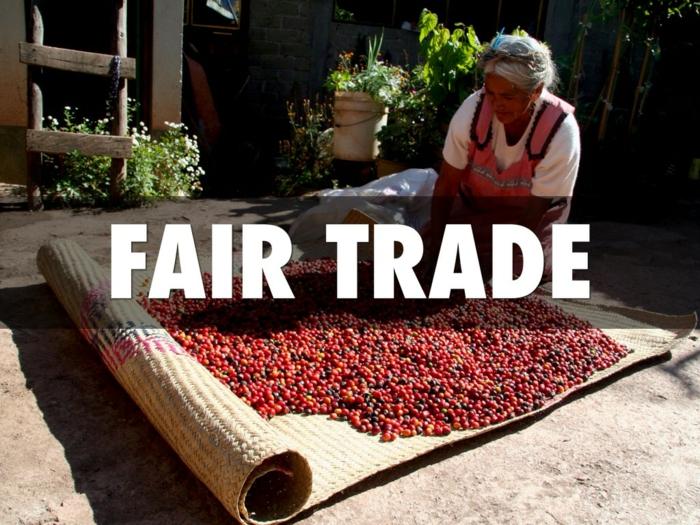 fairtrade produkte einkaufen kaffeebohnen sisalteppich frau