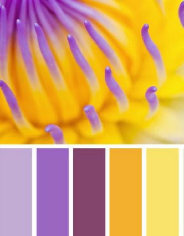 farbgestaltung schlafzimmer lila ~ kreative deko-ideen und ... - Farbgestaltung Fur Schlafzimmer Das Geheimnisvolle Lila
