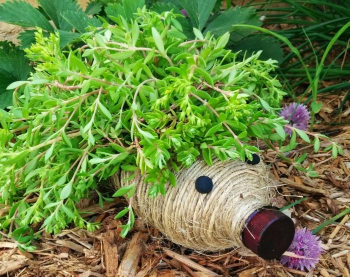 kreative bastelideen pflanzenbehälter gartenideen