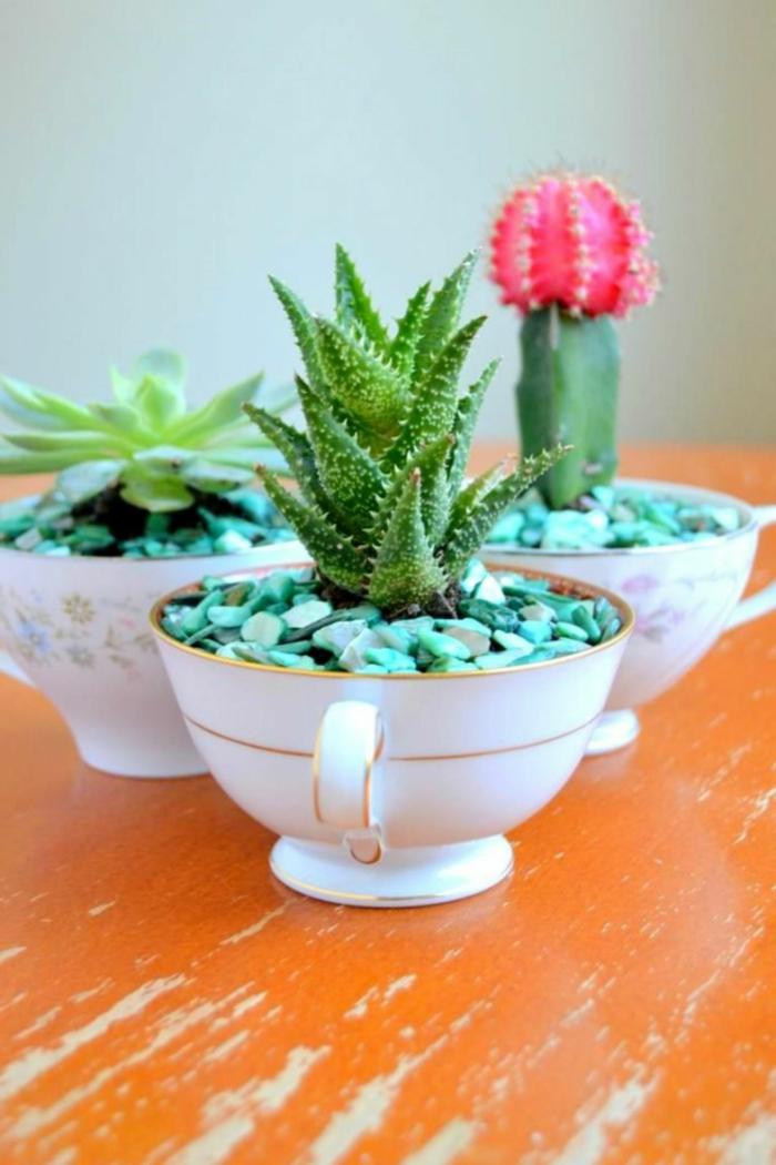 kreative bastelideen pflanzenbehälter sukkulenten
