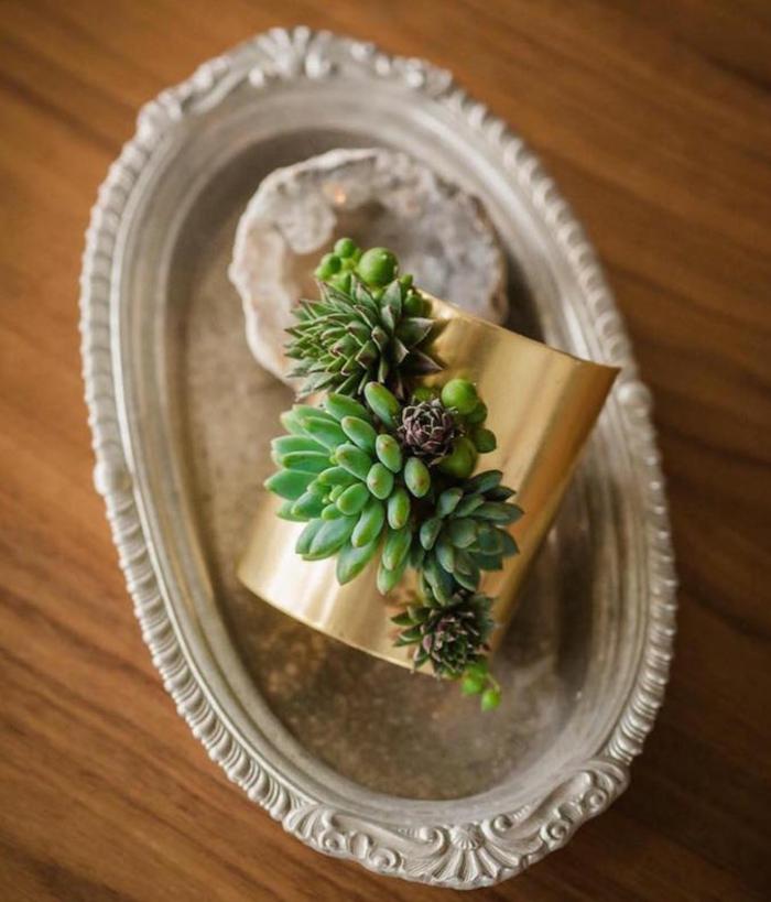 schmuckdesign echte pflanzen die noch wachsen brosch tablett