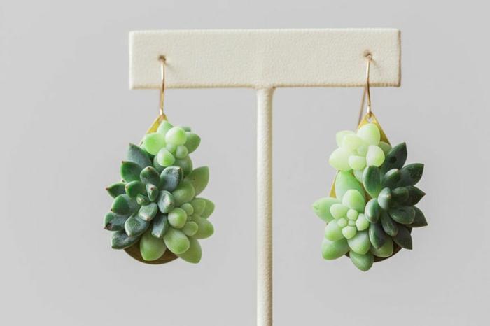 schmuck design echte pflanzen die noch wachsen minis