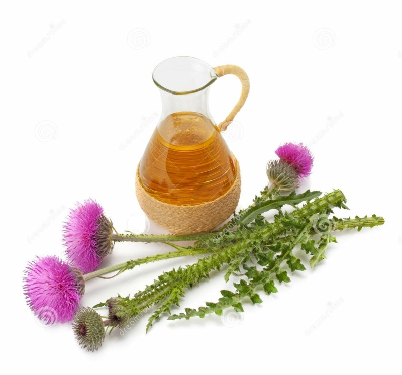Distelöl ätherische Öle Wirkung Duftöle