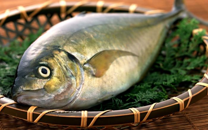 Fisch zubereiten frisches fleisch fisch rezepte fisch und fang dunsten