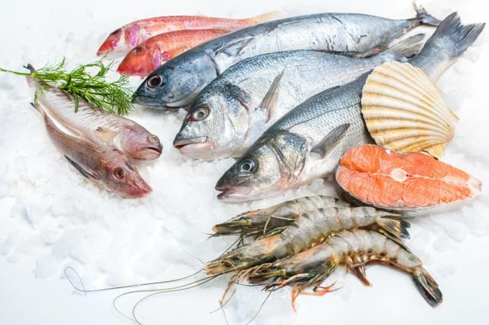 Fisch zubereiten frisches fleisch fisch rezepte fisch und fang