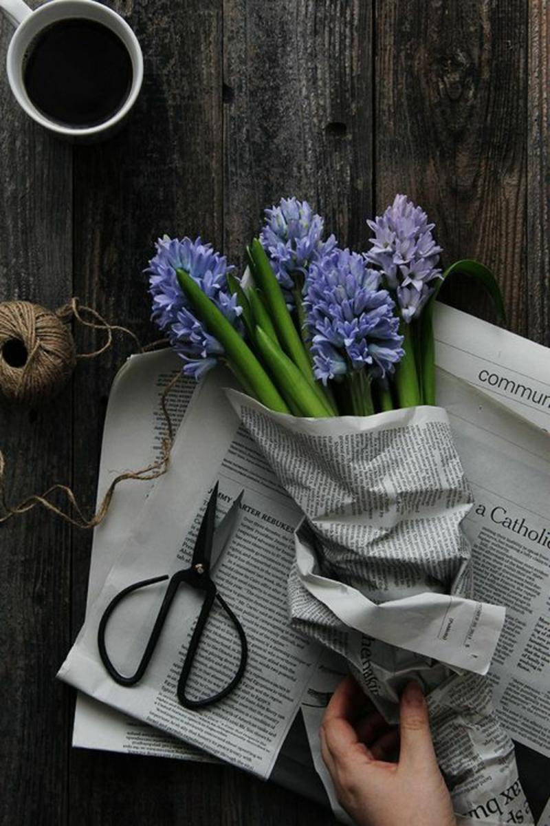 Frühjahrsblumen Garten-Hyazinthen schöne Frühlingsblumen Bilder