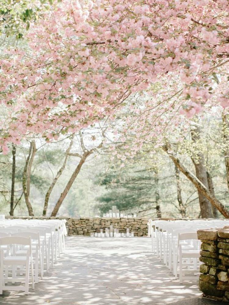 Hochzeitsfeier Ideen rosa romantische Hochzeitsdeko Frühlingsbäume