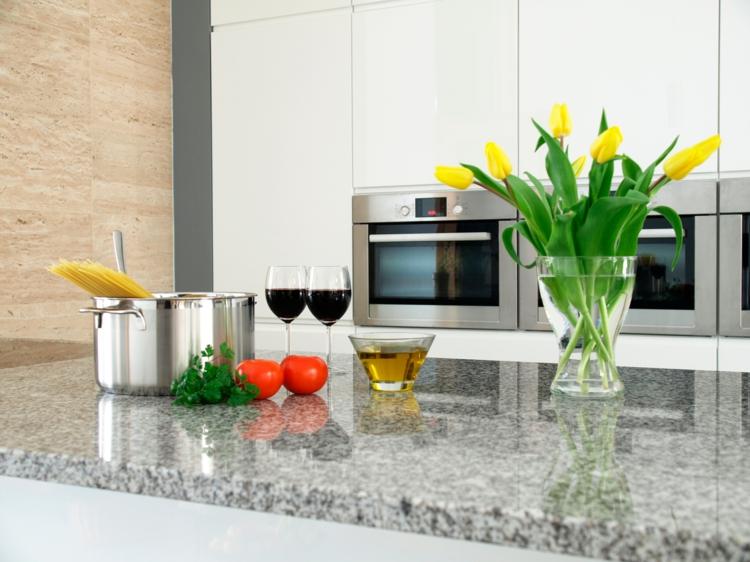 Küchenarbeitsplatten Granit Vorteile moderne Küchengestaltung