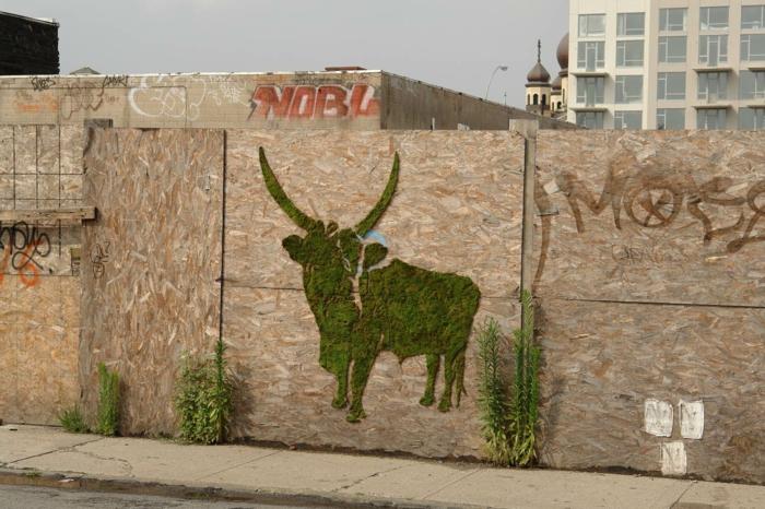 Moos Graffiti streetart künstler ornament büffel