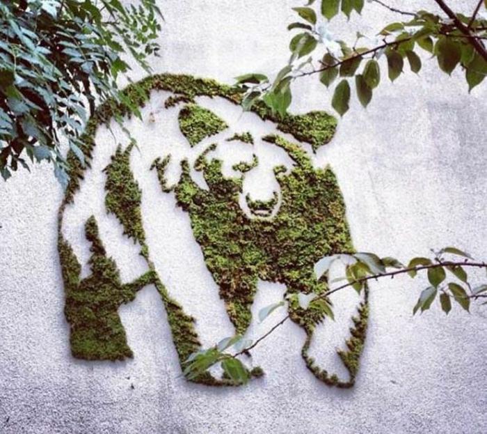 Moos Graffiti streetart künstler ornament baer