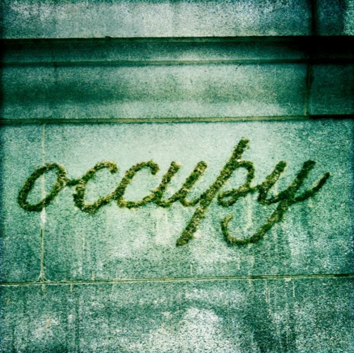 Moos Graffiti streetart künstler ornament occupy