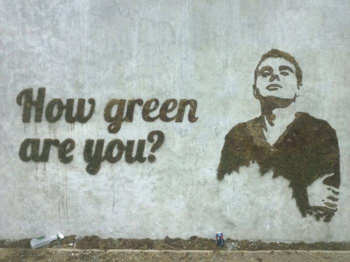 Moos Graffiti streetart künstler ornament slogan