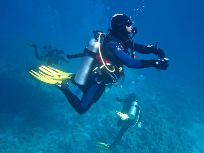Petra Jordanien Hauptstadt Jordanien Das tote Meer strand urlaub aqaba taucher