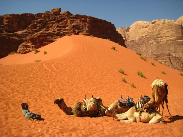 Petra Jordanien Hauptstadt Jordanien Das tote Meer strand wadi rum ocher