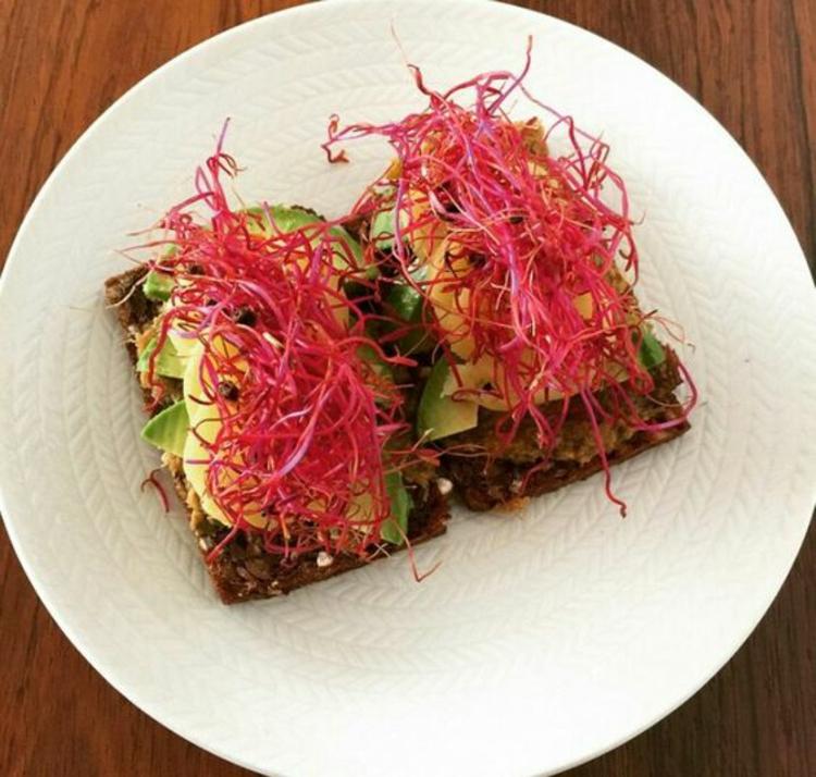 Schmierbrot mit und Rote Beete Sprossen gesunde Ernährung Tipps
