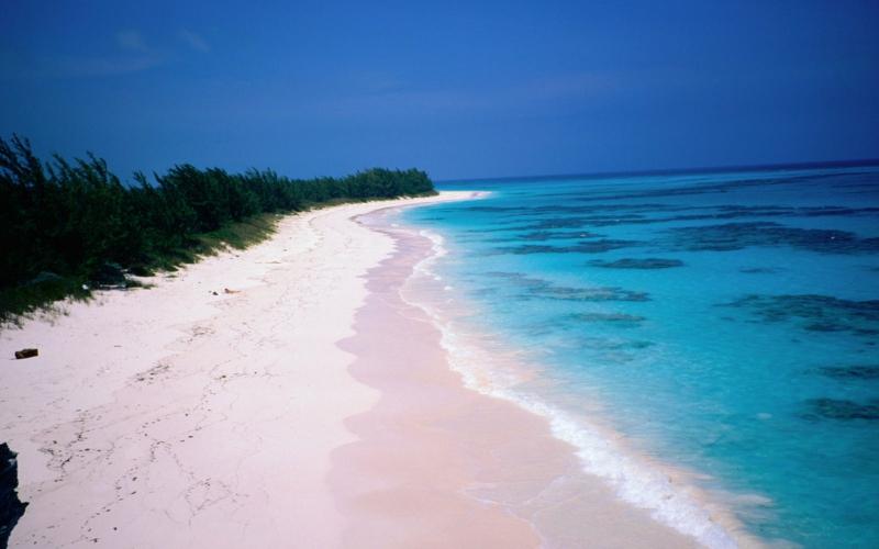 die schönsten Strände der Welt Pink Sands Beach Harbour Island Bahamas