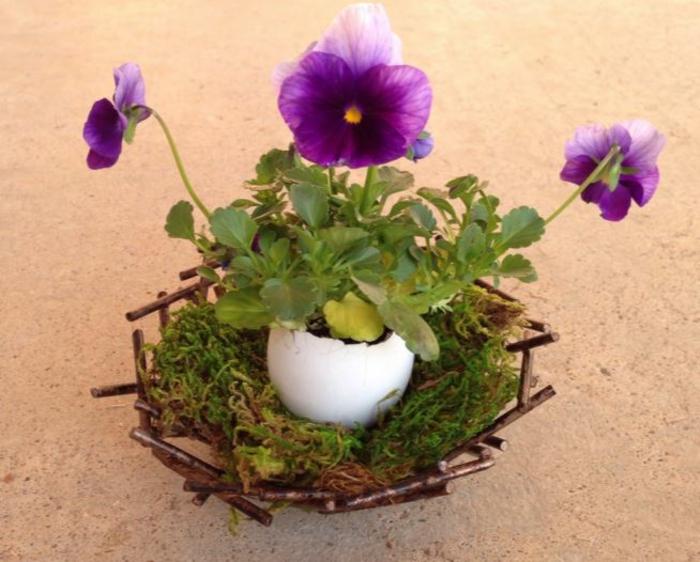 tischdeko begonien violetta
