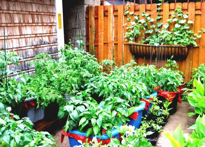 deko tipps garten gemüse gartenzaun pflanzenbehälter