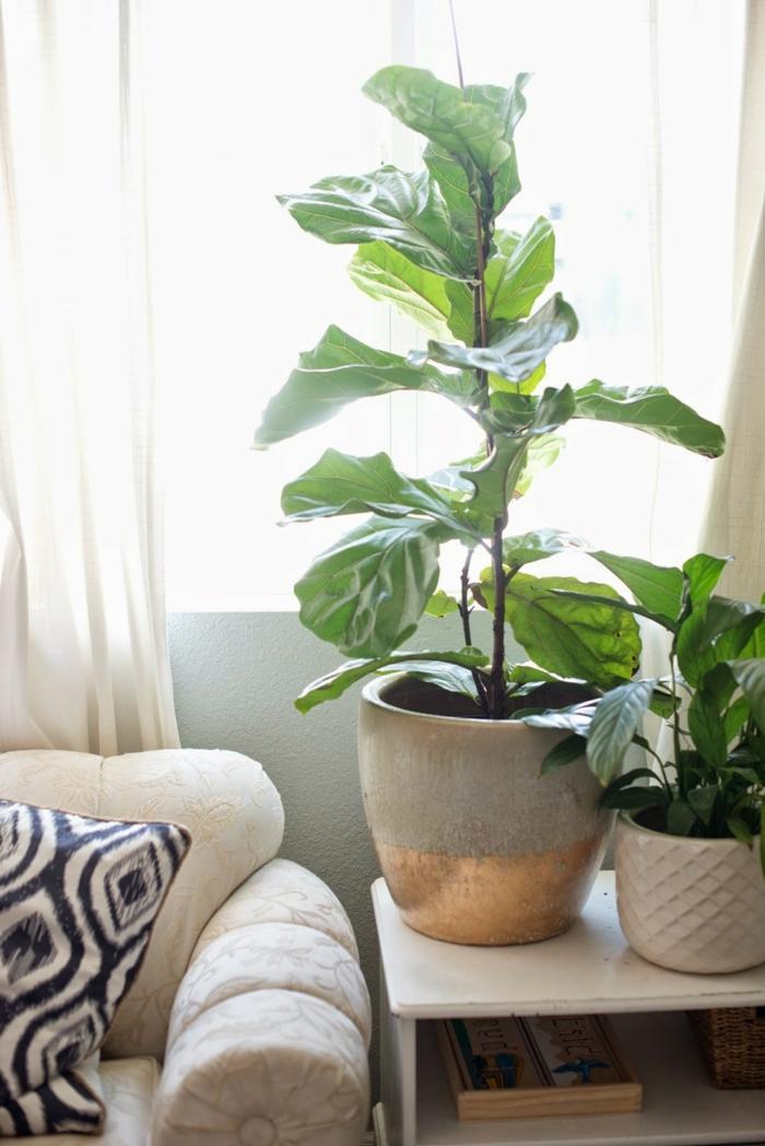 deko tipps wohnzimmer dekoideen topfpflanzen umpflanzen