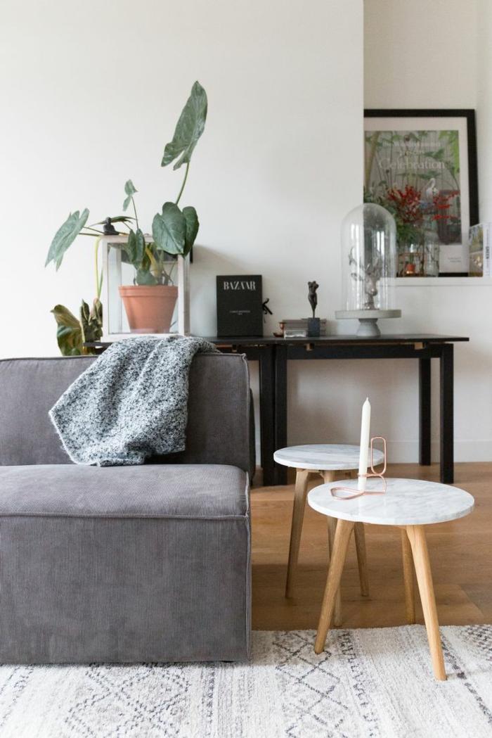 ... Ambiente Durch Eine Pflanze Verschönern. Deko Tipps Wohnzimmer  Dekorieren Skandinavische Möbel Heller Teppich