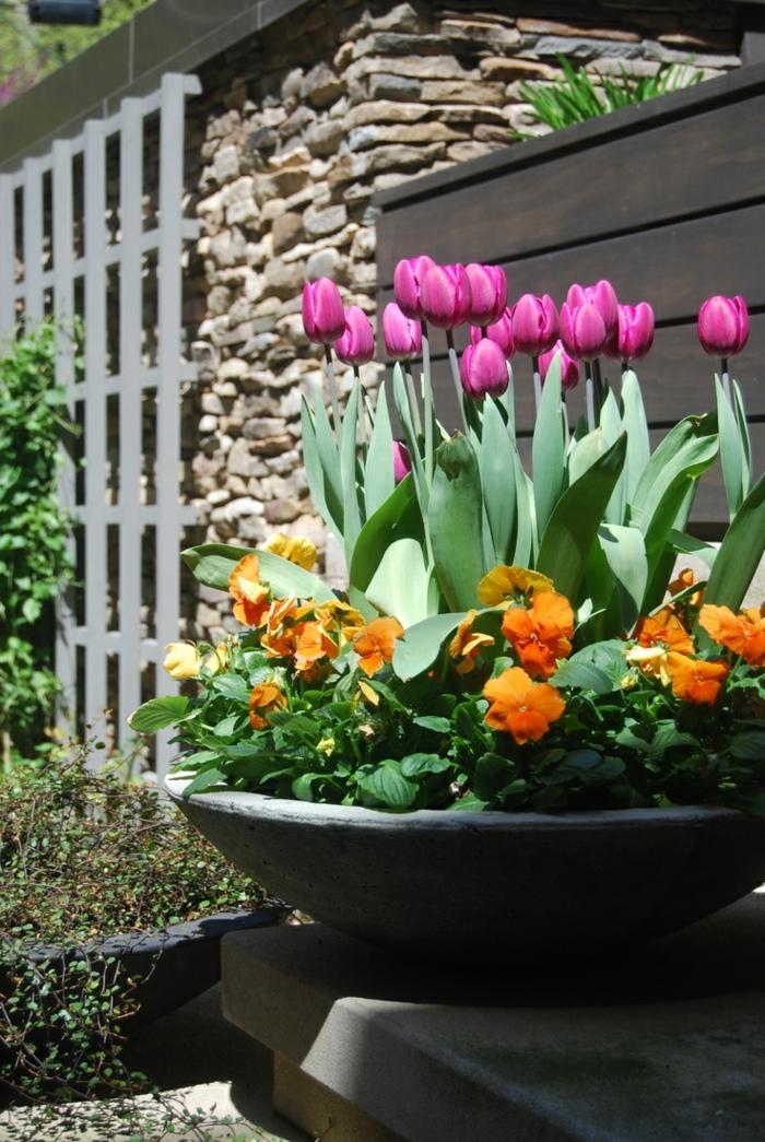dekoideen frühling außenbereich dekorieren pflanzenbehälter