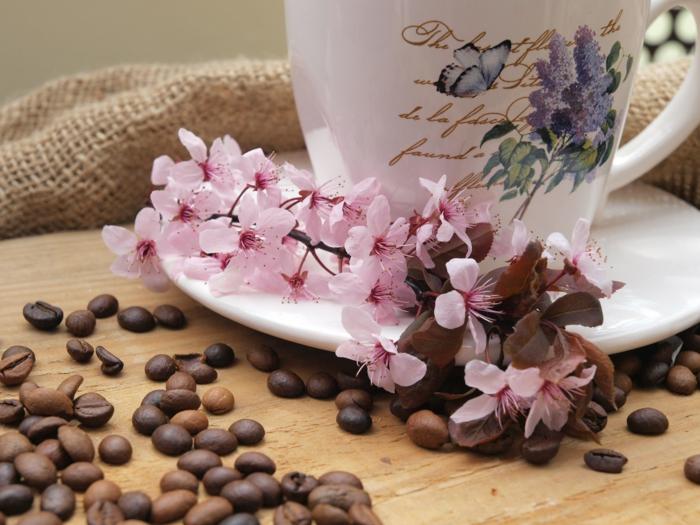 dekoideen frühling kaffeebohnen frühlingszweige mandelblüten decoesfera