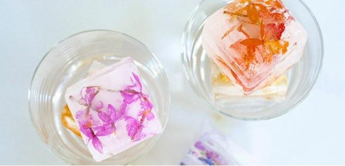 sommer rezepte eiswürfel eiswürfelbehälter glaeser