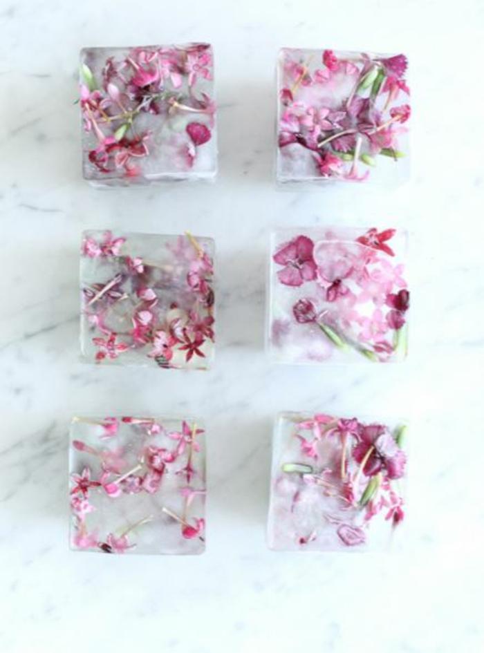sommer rezepte eiswürfel eiswürfelbehälter würfel blüten