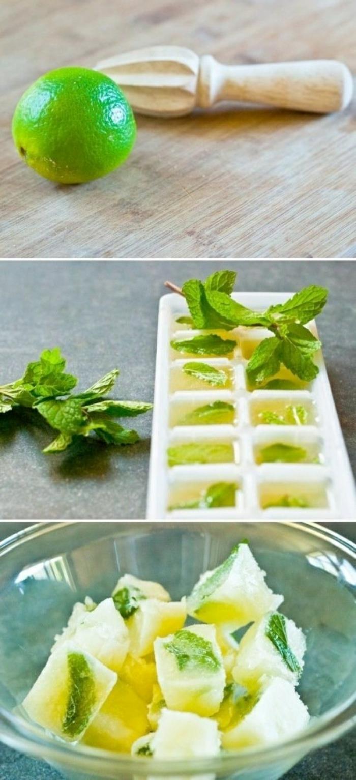 sommer rezepte eiswürfelbehälter würfel limette