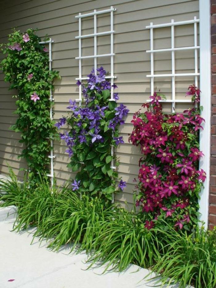 Garten gestaltung ideen mit optischen illusionen und for Estructuras para viveros plantas