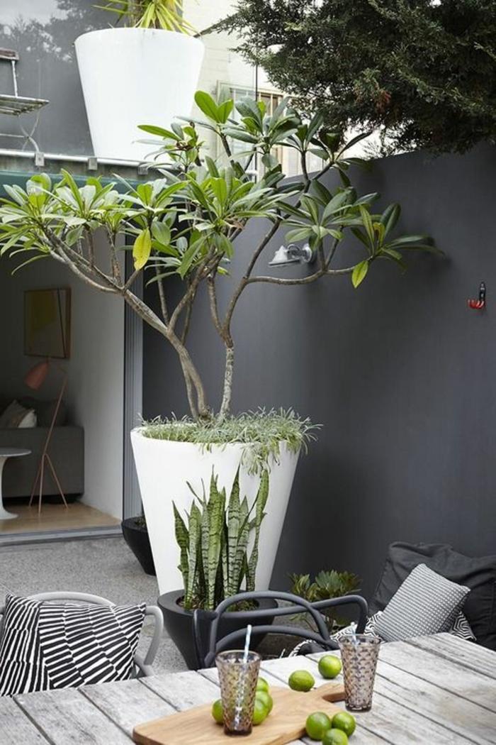 garten verschönern dekoideen richtig umpflanzen